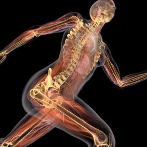 Osteopathie vitamine D en sterke botten